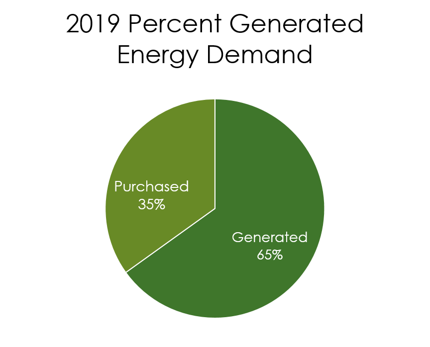 Graph of Hayward's percent generated energy in 2019