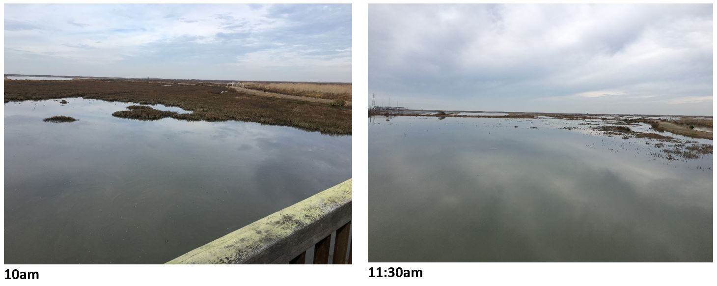 Tide comparison 10am and 11:30am