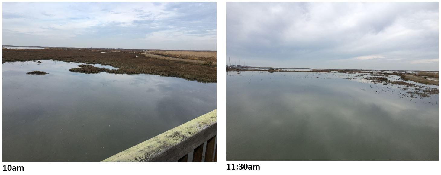 Tide comparison 10am and 11:30am