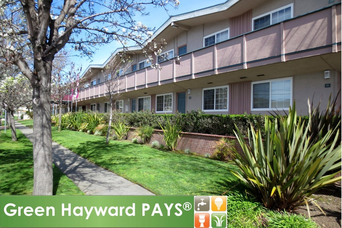 green hayward pays