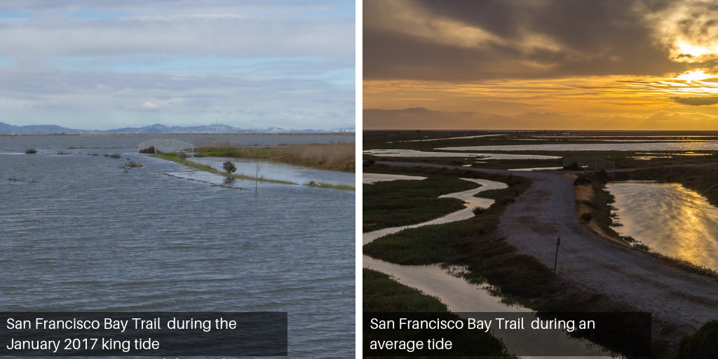 Side by side views of the Hayward shoreline during a normal tide and the 2017 king tide