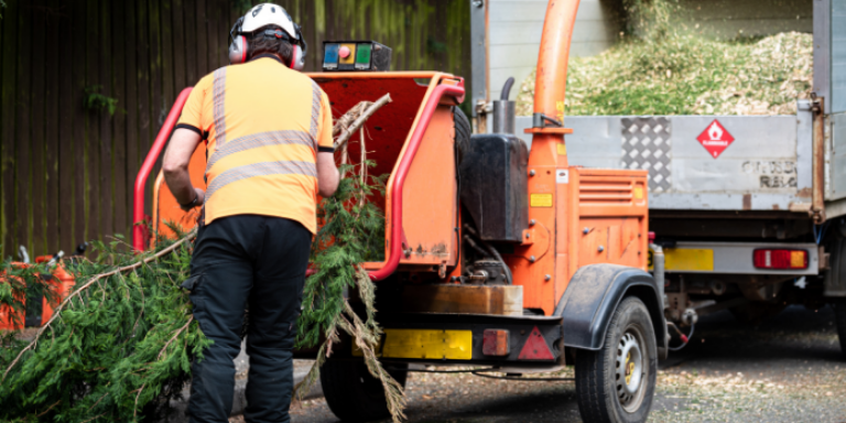 A man putting tree branches into a wood chipper