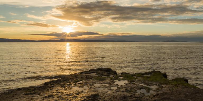hayward Shoreline at sunset