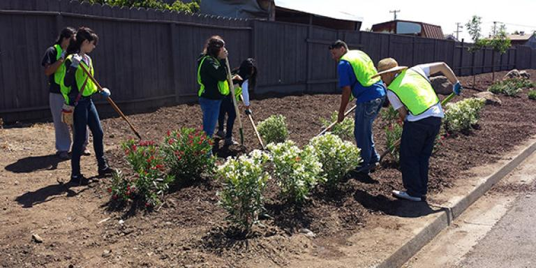 Keep Hayward Clean & Green Landscape Project