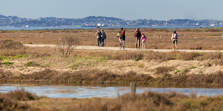 People waling along the Hayward Shoreline on a sunny day