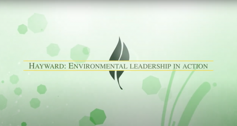 A graphic with a light green background with leaves and organic shapes. Title: Hayward: Environmental Leadership in Action