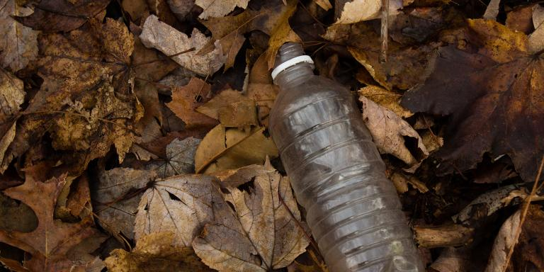 A plastic water bottle in a pile of leaves